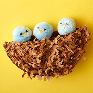 Paper Plate Birds Nest with Baby Birds